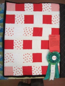 3rd Place Small Quilt: Victoria Lynchard